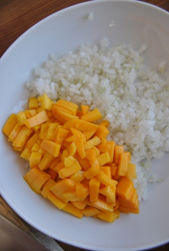 mango cevice the food boy1